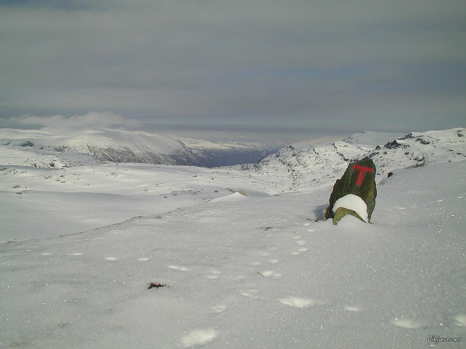 Fiskedalen
