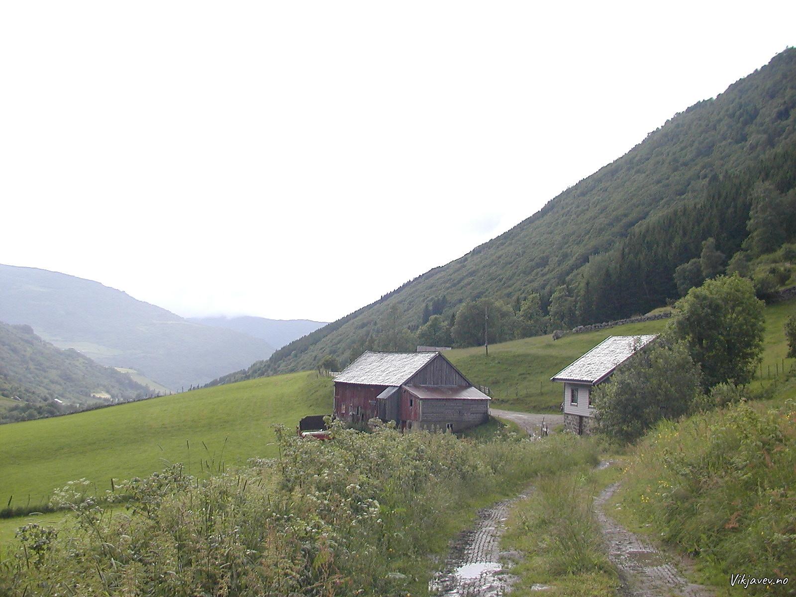 Bruavoll