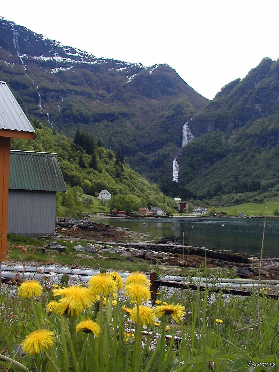 Frå Indrefjorden
