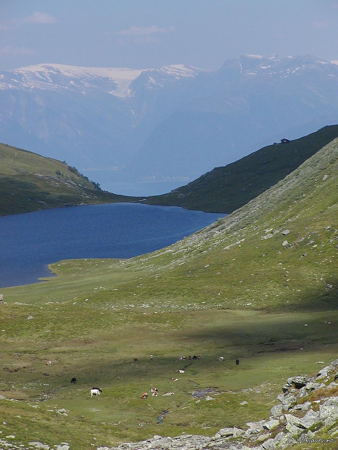 Gravotnvatnet og Tinghaug
