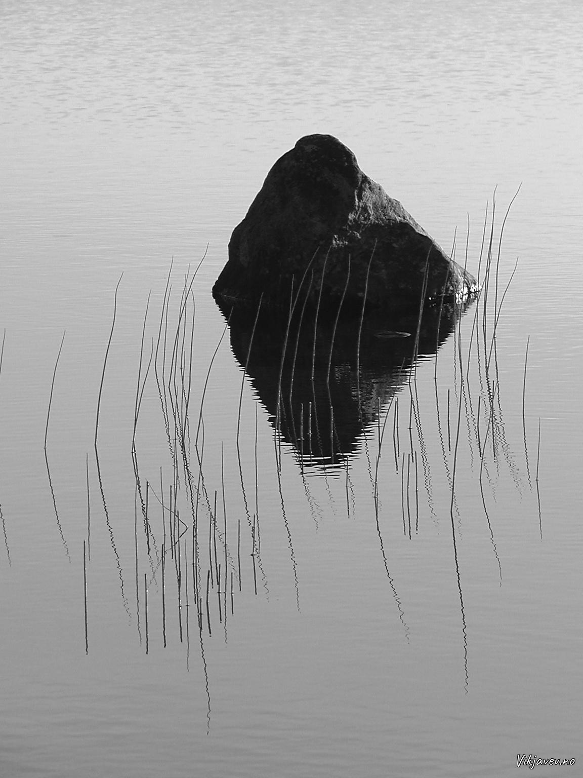 Stein i vatnet