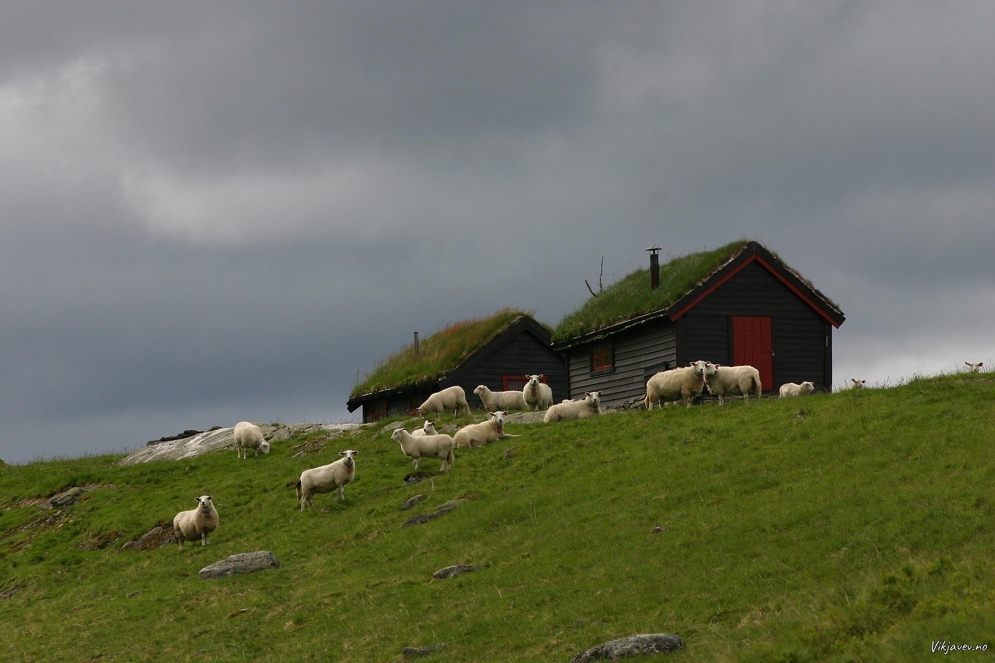 Bjønndalen
