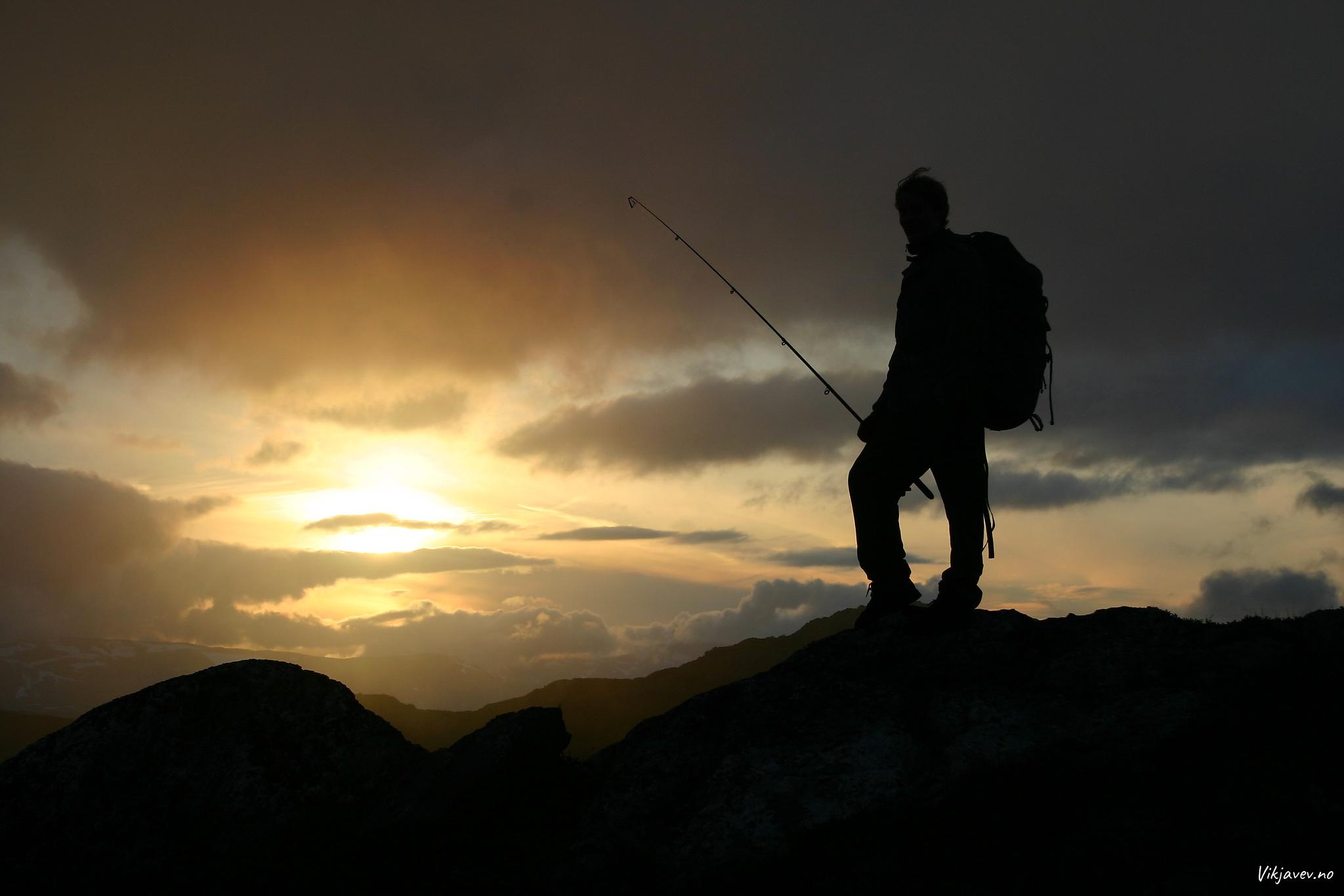 Fiskar i solnedgang