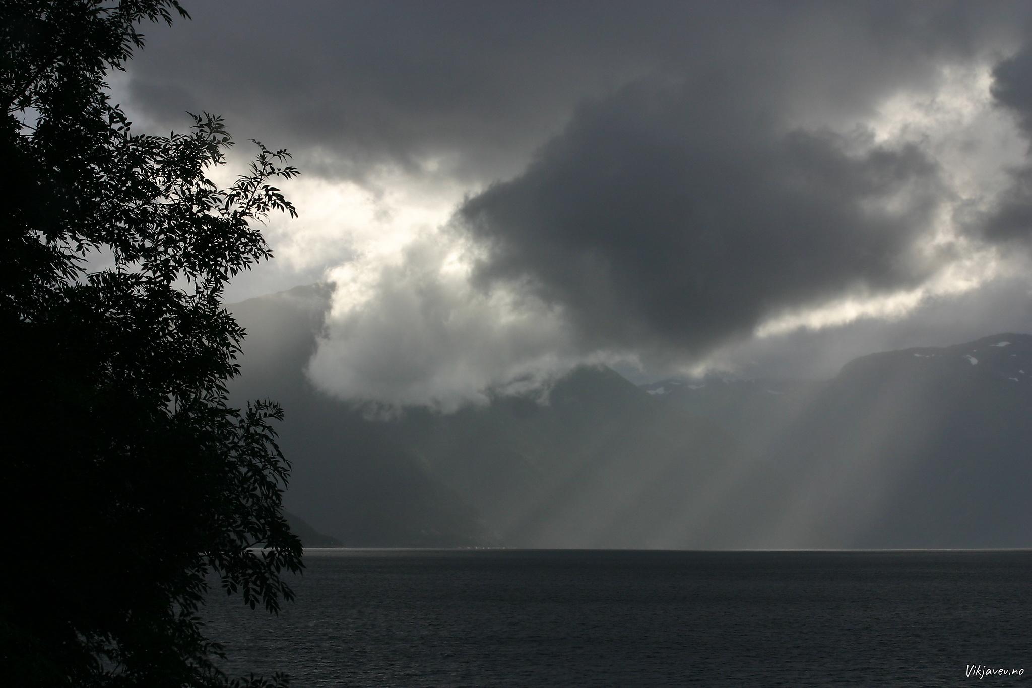 Uver på Sognefjorden