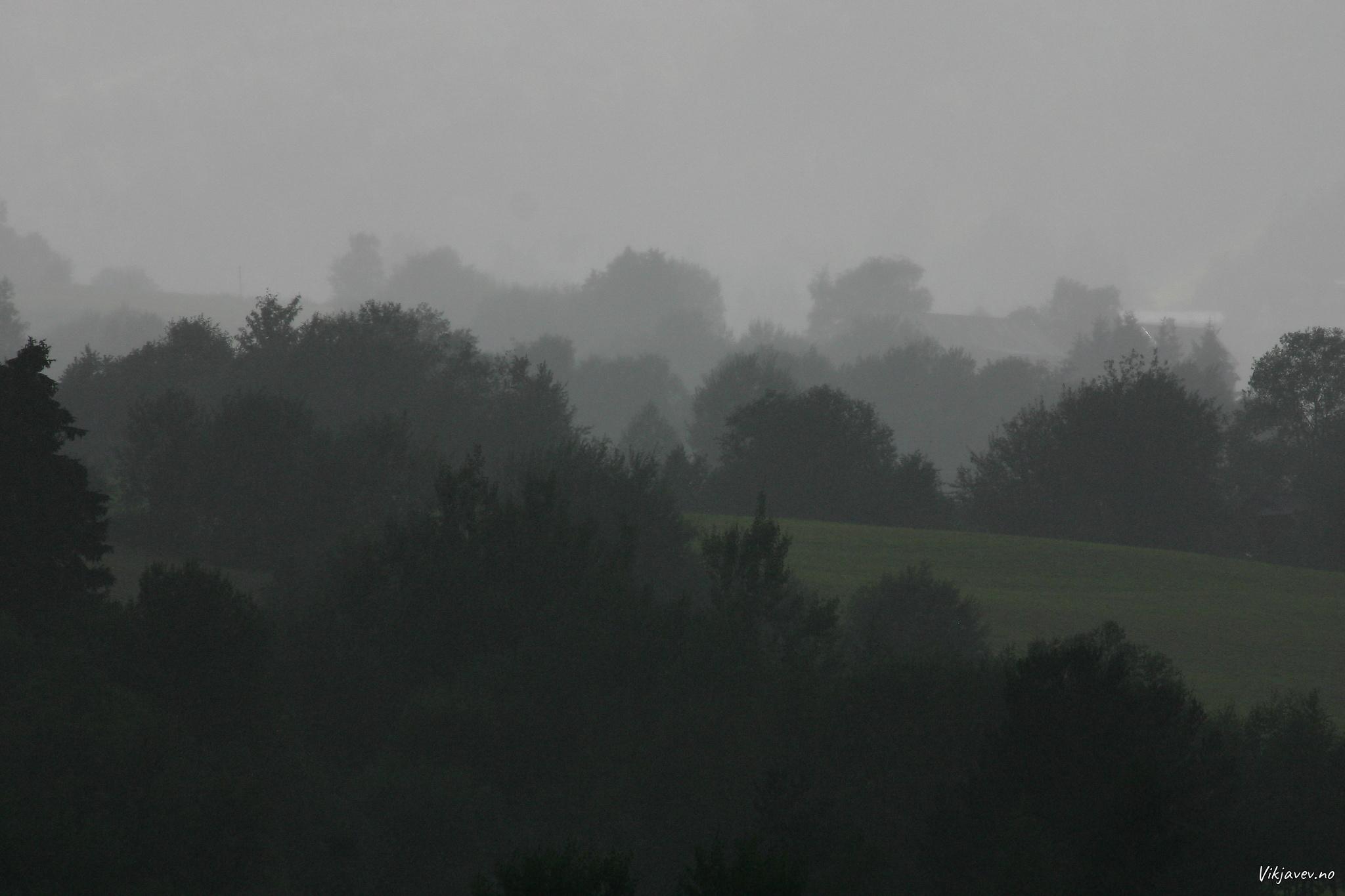 Regn på Bøadalen