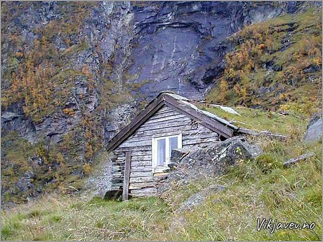 Sel på Rislågfossen