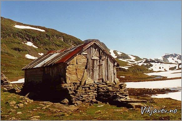 Sel i Nedsta Vollafjellet