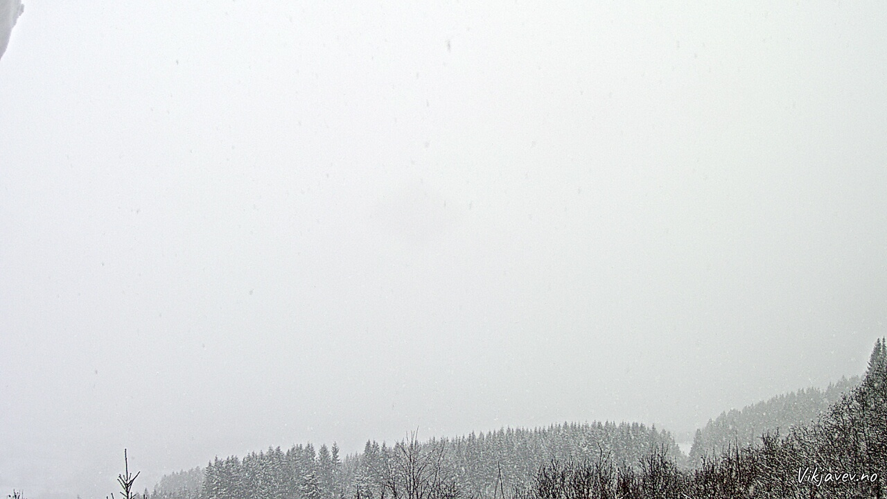 Vik i Sogn March 1, 2020 3:00 PM