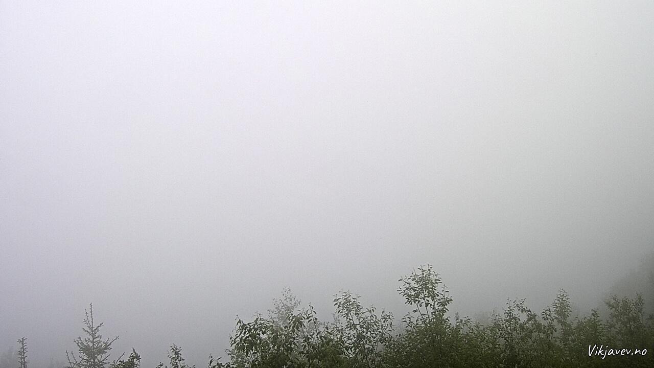 Vik i Sogn June 10, 2021 5:00 PM