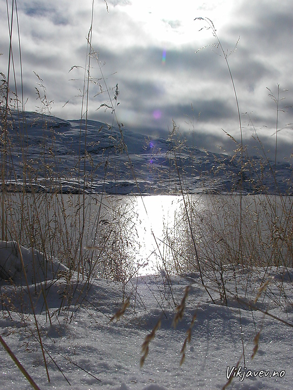 Frå Skjelingavatnet