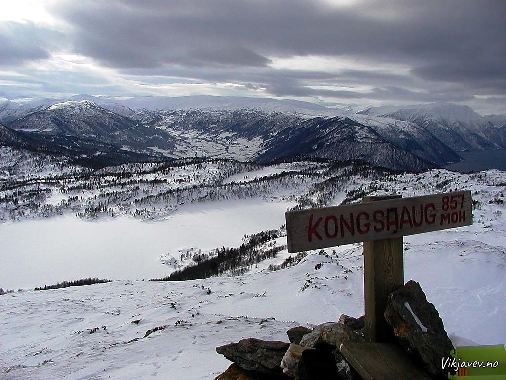 Kongshaug