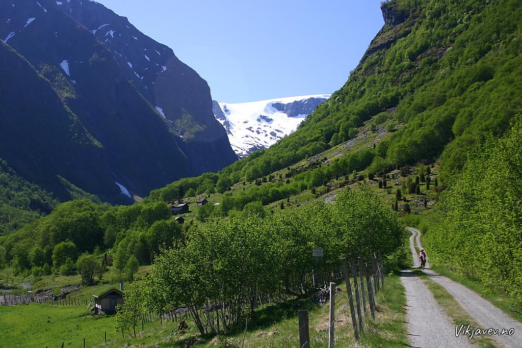 Engi i Fresvik