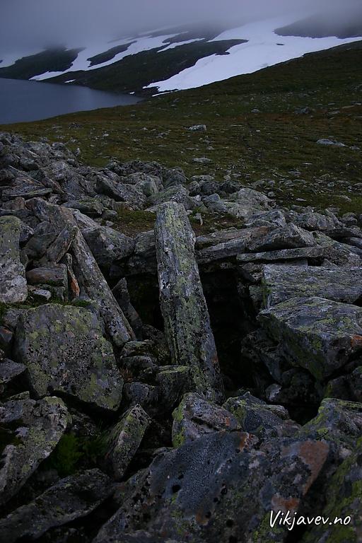 Dyregrav på Fossfjellet