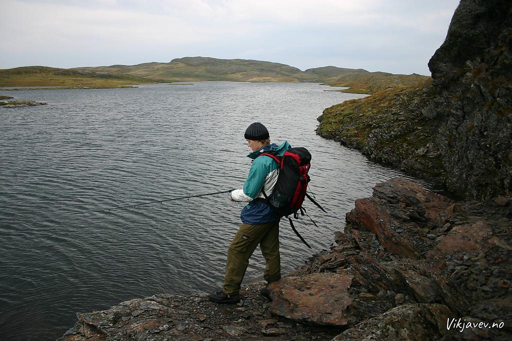 Fiskar ved Hoprevatnet