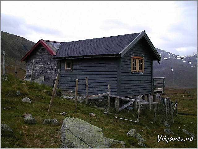 Sel i Vikjadalen