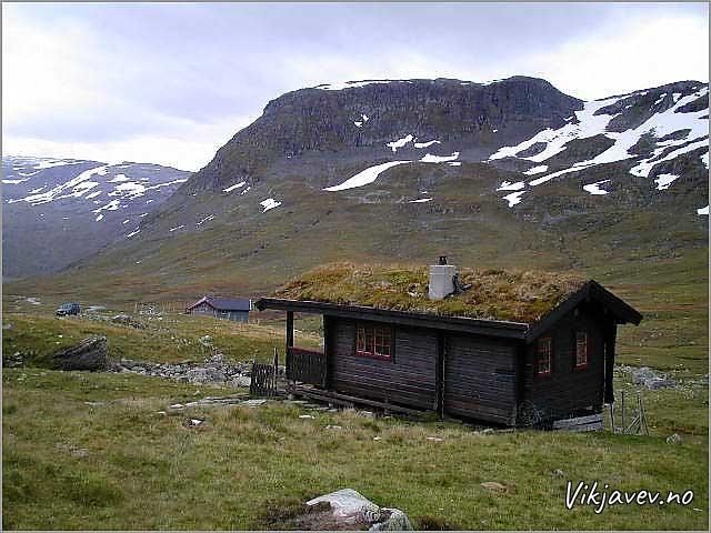 Hytte i Vikjadalen
